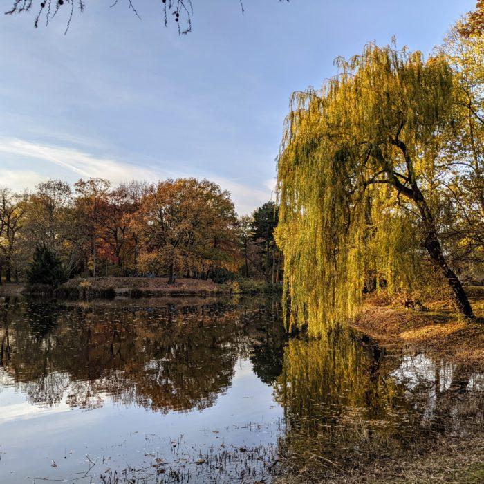Am Teich - Palmengarten, Leipzig