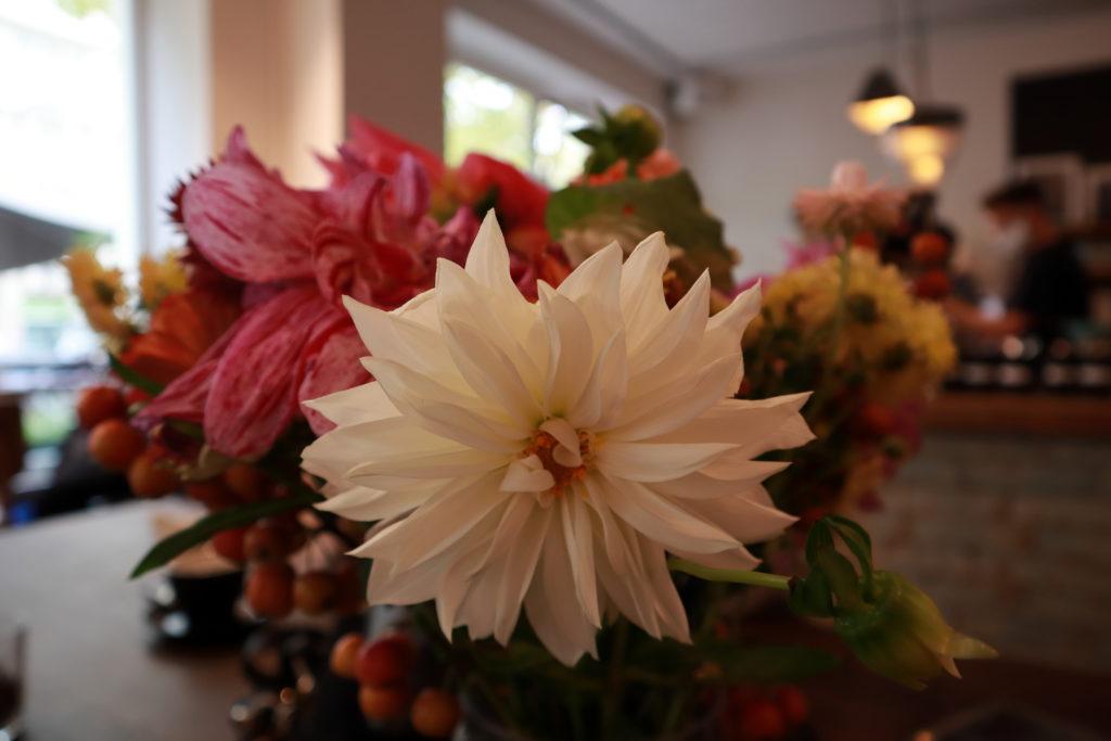 Blumen - Café Obenauf